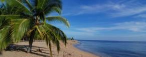 Puerto Viejo Surf Adventures