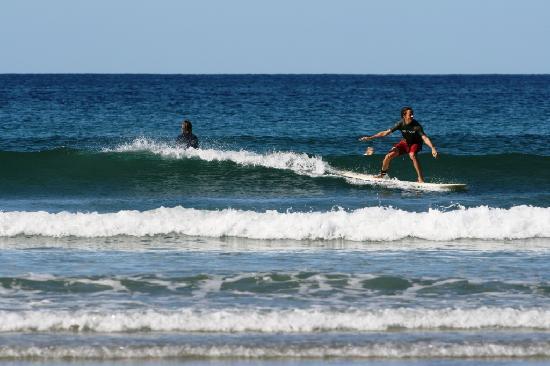 Safari Surf School