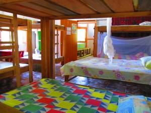 Hostel Crocodile Surf Camp 1