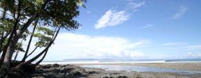 Pavones Regional Surf Guide