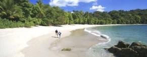 Manuel Antonio Area Surf Guide