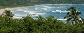 Nosara Area Regional Surf Guide