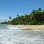 Punta Uva Surf Guide
