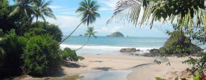 Tamarindo Surf Spots Guide