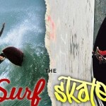 Central Valley / San Jose Surf Shops