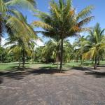 Playa Palo Seco Parking Area