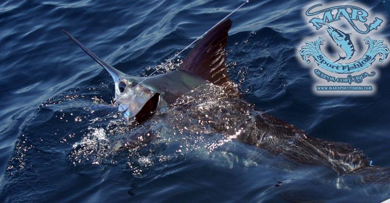Mar1 Sport Fishing 1